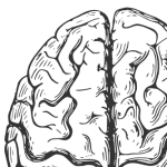 The Pentagon of Neuroscience -- An Infographic/Listicle for Understanding the Neuroculture