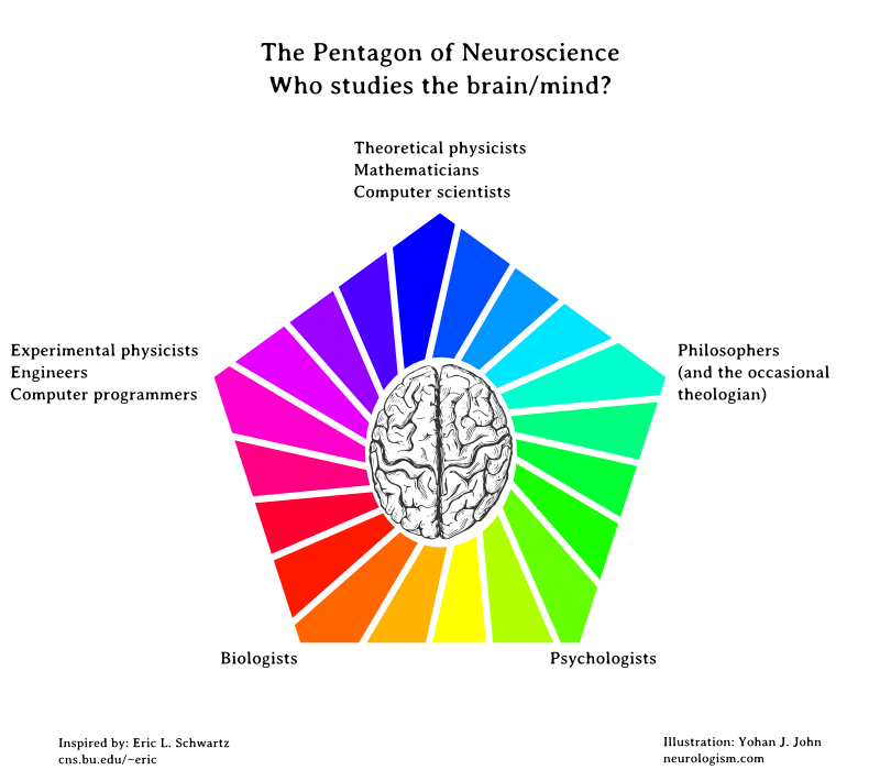 Neuroscience types of majors