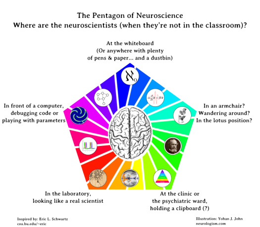 neuropentagram5